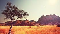 Crociere Africa
