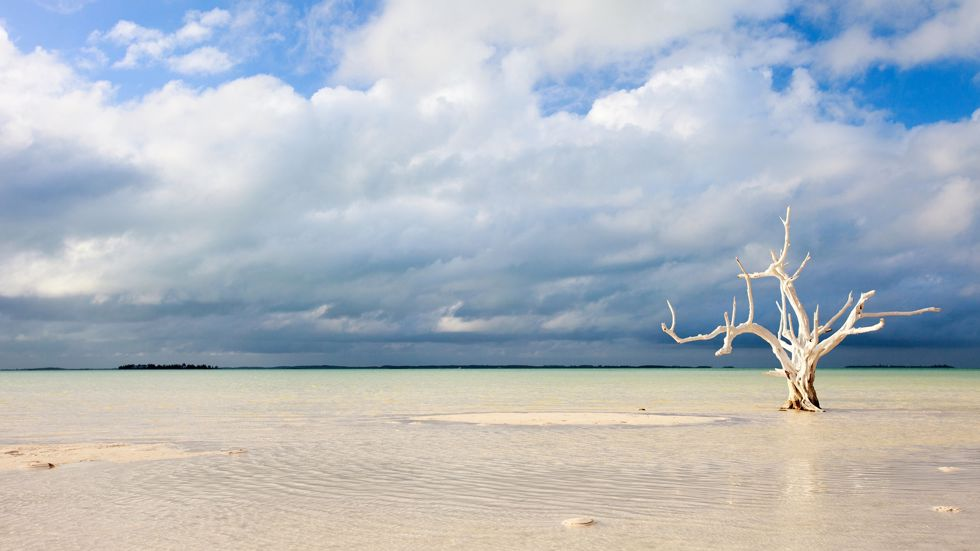 Crociere Bahamas