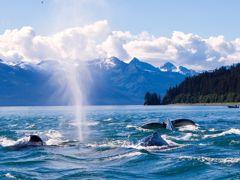Crociere Juneau