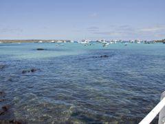 Crociere Puerto Ayora