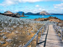 Cruceros Isla Bartolomé