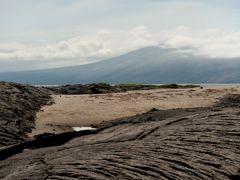 Croisières Punta Espinoza